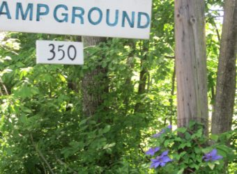 Fernwood Forest Campground